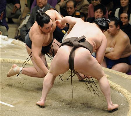 相撲 つきひざ